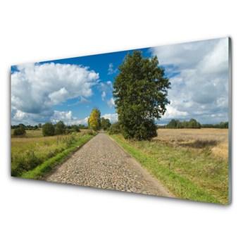 Obraz na Szkle Wieś Droga Bruk Krajobraz