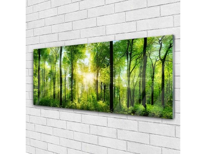 Obraz na Szkle Las Natura Drzewa Wymiary 60x120 cm Wymiary 50x125 cm