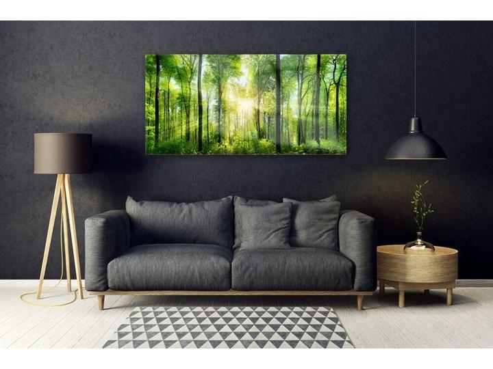 Obraz na Szkle Las Natura Drzewa Pomieszczenie Biuro i pracownia Pomieszczenie Salon