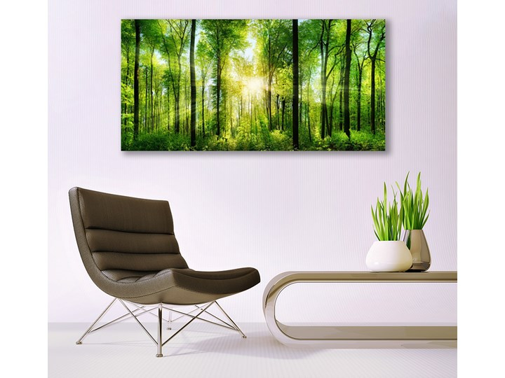 Obraz na Szkle Las Natura Drzewa Kategoria Obrazy