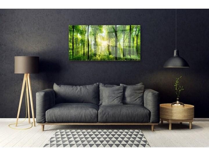 Obraz na Szkle Las Natura Drzewa Wymiary 60x120 cm