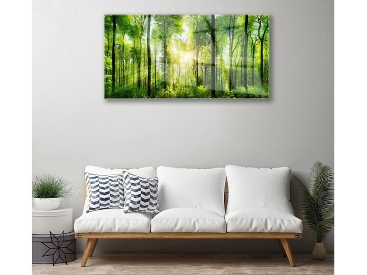 Obraz na Szkle Las Natura Drzewa Wymiary 50x125 cm Pomieszczenie Biuro i pracownia