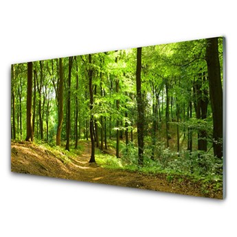 Obraz na Szkle Las Ścieżka Natura