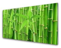 Obraz na Szkle Bambus Łodyga Kwiat Roślina