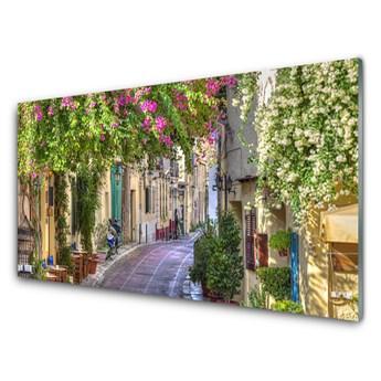 Obraz Szklany Alejka Kwiaty Domy Roślina