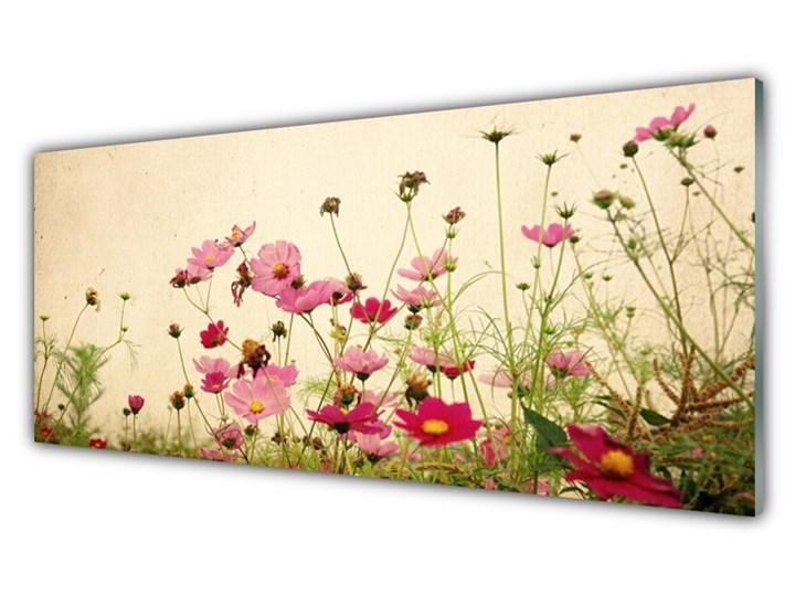 Obraz Szklany Kwiaty Roślina Natura Pomieszczenie Biuro i pracownia Wymiary 70x140 cm