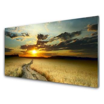 Obraz Szklany Dróżka Pole Krajobraz