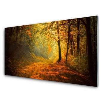 Obraz Szklany Las Dróżka Drzewa Przyroda