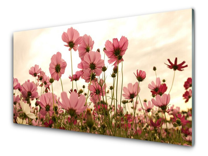 Obraz Szklany Kwiaty Polne Łąka Natura Kolor Różowy Wykonanie Na szkle