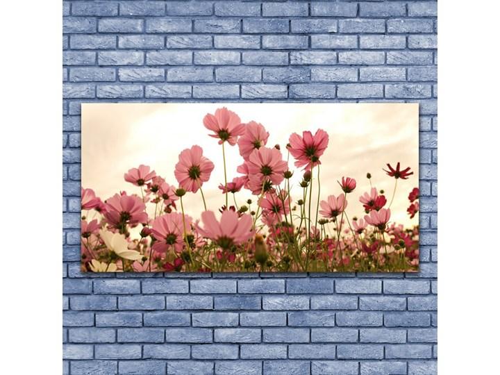 Obraz Szklany Kwiaty Polne Łąka Natura Pomieszczenie Salon