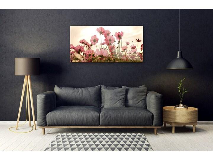 Obraz Szklany Kwiaty Polne Łąka Natura Kategoria Obrazy