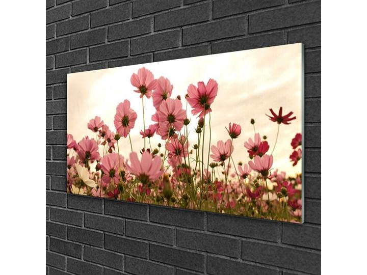 Obraz Szklany Kwiaty Polne Łąka Natura Wymiary 50x125 cm