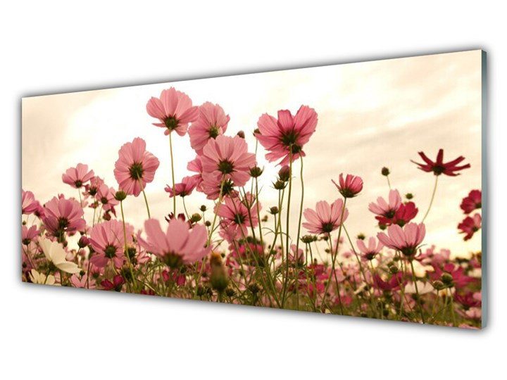 Obraz Szklany Kwiaty Polne Łąka Natura Wykonanie Na szkle