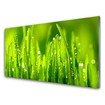 Obraz Szklany Zielona Trawa Krople Rosy