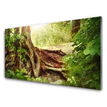 Obraz Szklany Drzewo Pień Natura Las