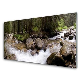 Obraz Szklany Las Rzeka Wodospady