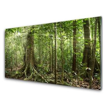Obraz Szklany Las Natura Dżungla Drzewa