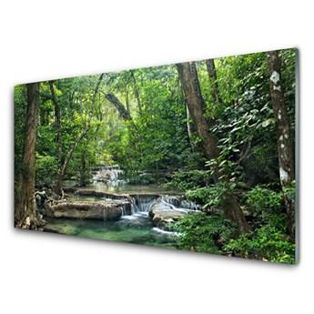Obraz Szklany Leśny Las Natura Przyroda
