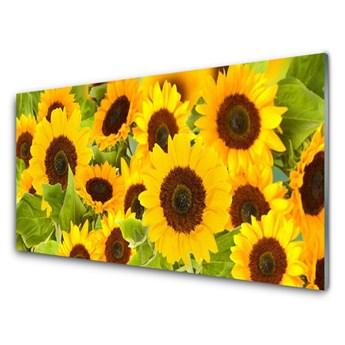 Obraz Akrylowy Roślina Słoneczniki