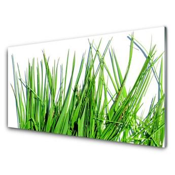 Obraz Akrylowy Trawa Na Ścianę