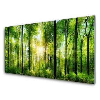 Obraz Akrylowy Las Natura Drzewa