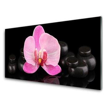 Obraz Akrylowy Kwiat Kamienie Roślina