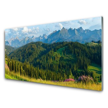 Obraz Akrylowy Góra Las Przyroda