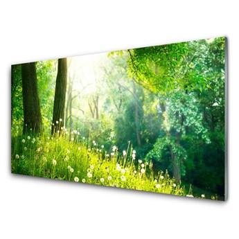 Obraz Akrylowy Łąka Natura Roślina