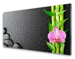 Obraz Akrylowy Bambus Łodyga Kwiat Roślina
