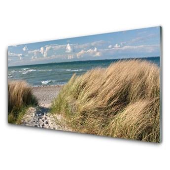 Obraz Akrylowy Plaża Morze Trawa Krajobraz