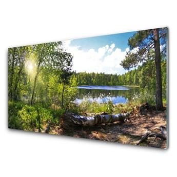 Obraz Akrylowy Las Drzewa Jezioro Przyroda