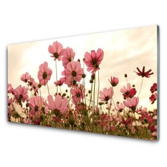 Obraz Akrylowy Kwiaty Polne Łąka Natura