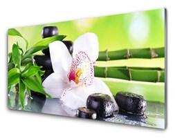 Obraz Akrylowy Storczyk Bambus Liście