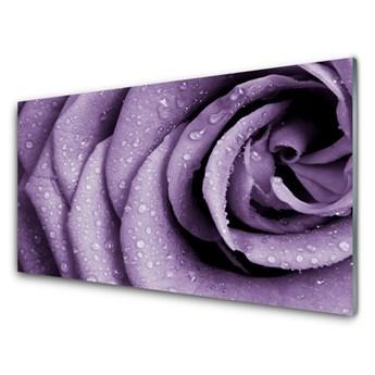 Obraz Akrylowy Róża Kwiat Roślina
