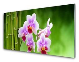 Panel Szklany Bambus Storczyk Kwiaty Zen