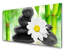 Panel Szklany Bambus Stokrotka Kwiat