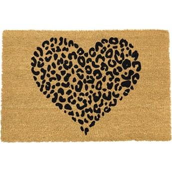 Wycieraczka Artsy Doormats Leopard Pint, 40x60 cm