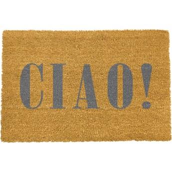 Wycieraczka Artsy Doormats Ciao Grey, 40x60 cm