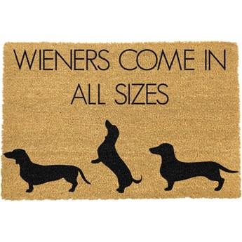 Wycieraczka Artsy Doormats Weiners Come In All Sizes, 40x60 cm