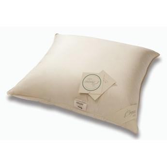 Poduszka Organic Cotton AMZ Jednokomorowa 40x40 cm