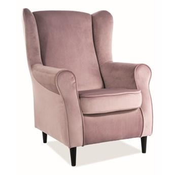 Fotel Uszak Baron Velvet - 9 kolorów antyczny róż