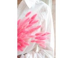 Bukiet dmuszek LAGURUS różowy
