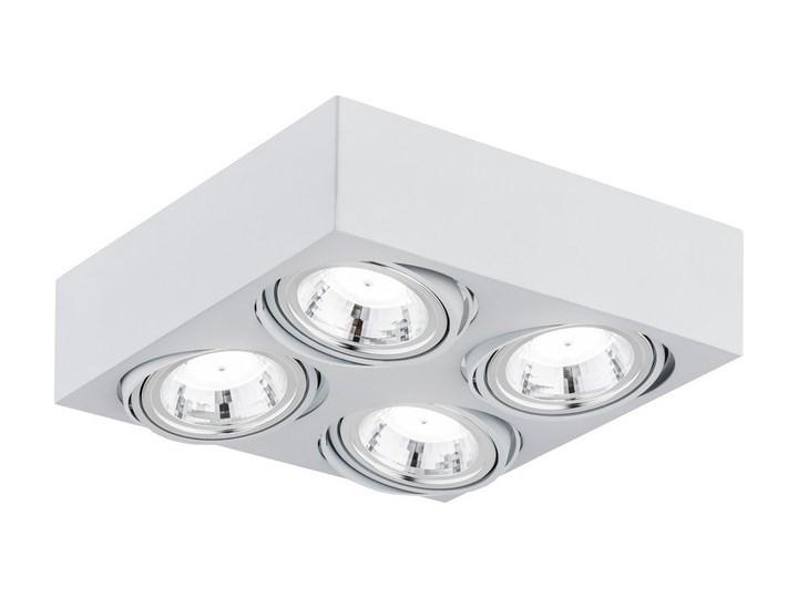 Oprawa LED ARGON RODOS : Kolor obudowy - biały