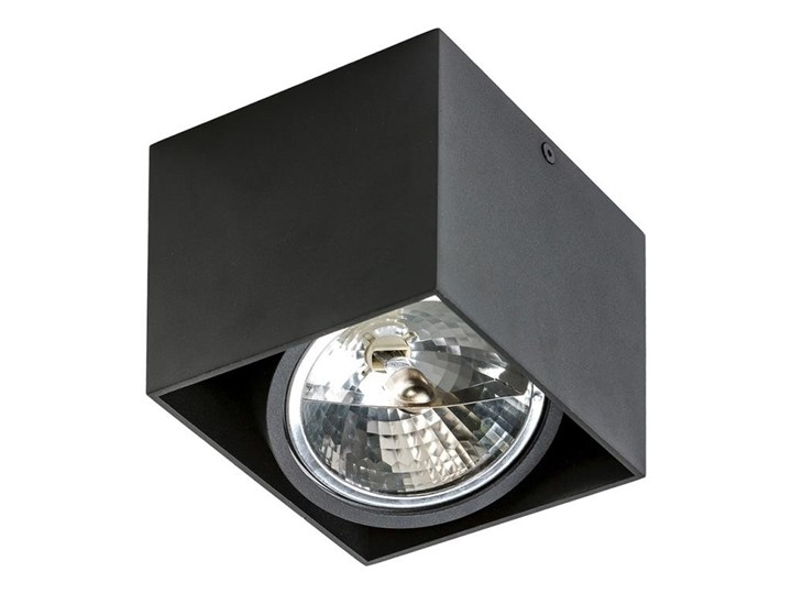 Azzardo AZ1358 - Plafon ALEX 1xG53/50W/230V