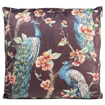 Poduszka dekoracyjna Flower Dream Birds 45x45 cm