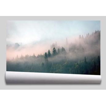 tapeta mgła w lesie pastele