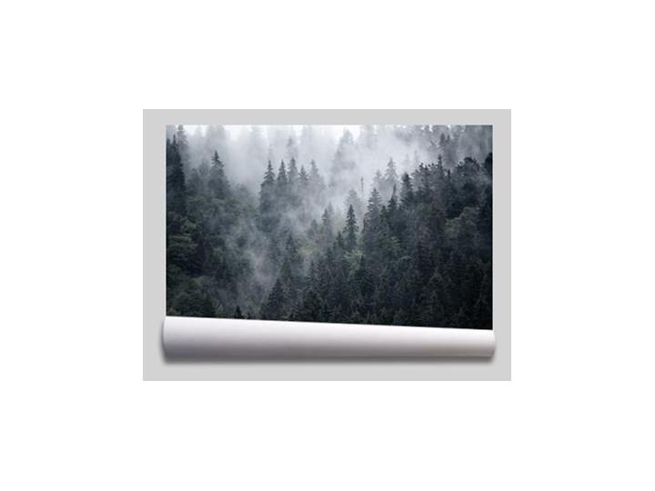 tapeta las czarno-biały