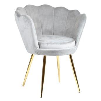 Welurowy fotel muszelka SHELL w kolorze szarym na złotych nogach