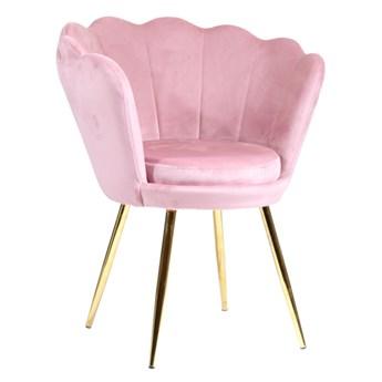 Welurowy fotel muszelka SHELL w kolorze pudrowy róż na złotych nogach